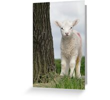 I'm Behind The Tree, But Not To You. Greeting Card