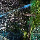 Back Yard Fresco by JackP