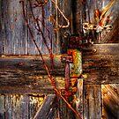 Weathered Barn Door by Dana Horne
