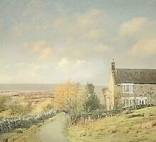 Evening Light On The Moors by patrixpix