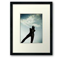 Ray Gun Zentai May 2012 Set I Pic 03 Framed Print
