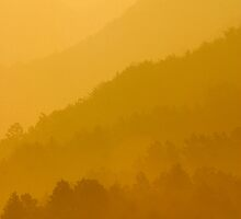 Golden Haze - Jirisan, South Korea by Alex Zuccarelli