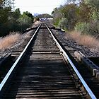 Railroad Tracks by Jeff Pierson