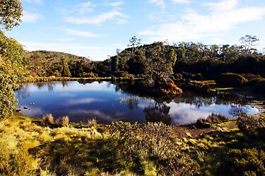 Beautiful Tasmania - The pond at The Lodge by georgieboy98