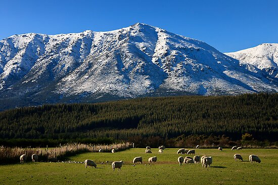 Snow capped - New Zealand by Hans Kawitzki