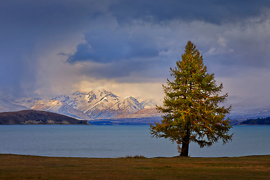 Lake Tekapo - New Zealand by Hans Kawitzki