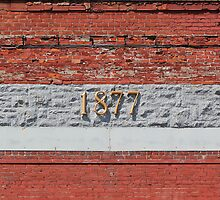 1877 by marybedy