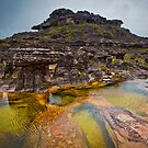 Rock Pool on top of Mount Roraima by Michael Telfer