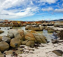 Bay of Fires V by Harry Oldmeadow
