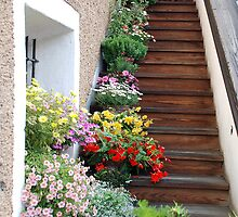 Flowers on the stair by Arie Koene