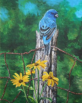Indigo Bunting on a Fence Post by Judy Bergmann