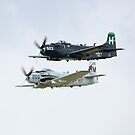 Skyraiders by Nigel Bangert