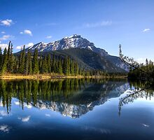 A Bow River Morning by Justin Atkins