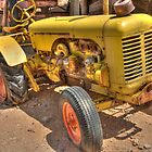 """Old Yeller""  HDR  by John  Kapusta"