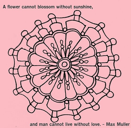 A Flower Cannot Blossom Without Sunshine by KeLu