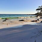 Morning Walk, Binalong Bay Tasmania Australia by bevanimage