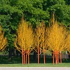 Painted Trees by Alexa Clement