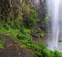 Waterfall, Springbrook National Park, QLD by burrster