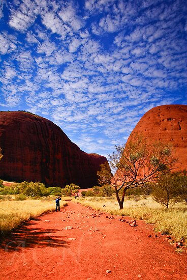 Clouds over The Olgas by Adam Northam