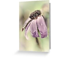 Brave and beautiful... Greeting Card