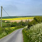 Back road to Spring by mikebov