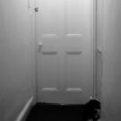The White Door by SquarePeg