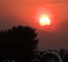Partial Eclipse by Marcella Hadden