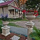 Cottage Garden Old Petrie Town Queensland Australia by PhotoJoJo
