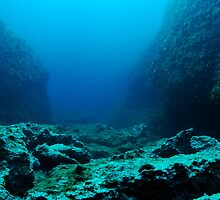 Rocks on ocean floor by Sami Sarkis