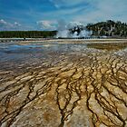 Yellowstone Blood Vessels by Dan Mihai
