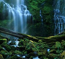 Proxy Falls by Bob Christopher