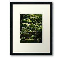 japanese gardens 2 Framed Print