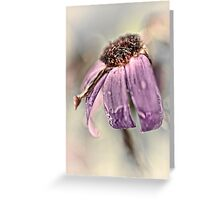 Brave and beautiful... (II) Greeting Card