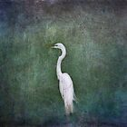 Egret in the Mist by Lynn Starner