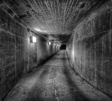 The Long Hall by Bob Larson