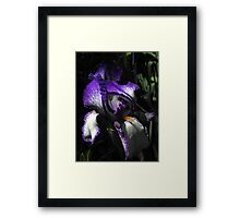 You're a picture - just an image caught in time...You've been left on your own...Like a Rainbow in the Dark Framed Print