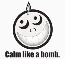 Calm Like a Bomb! by Diehl1881
