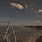 Pointe du hoc by Noze