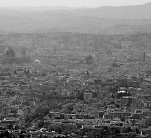 The City of Florence by kbrimson