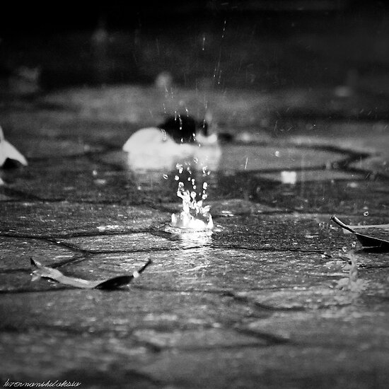 Dropfalls & Leaves on Brick by vanyahaheights