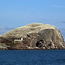 The Bass Rock, Scotland by Ian Coyle