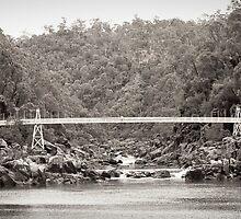 bridge across cataract gorge by aurelie k