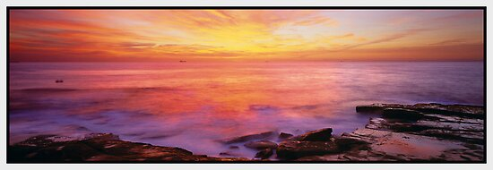 Glad to be Alive, Terrigal NSW by Chris Munn