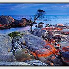 Endurance, Binalong Bay, TAS by Chris Munn