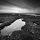 Salt Marsh Sunset BW by Andy Freer