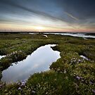 Salt Marsh Sunset by Andy Freer