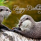 Happy Birthday, Otters playing on log  by CardZone By Ian Jeffrey