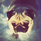 Pug II by yunnn