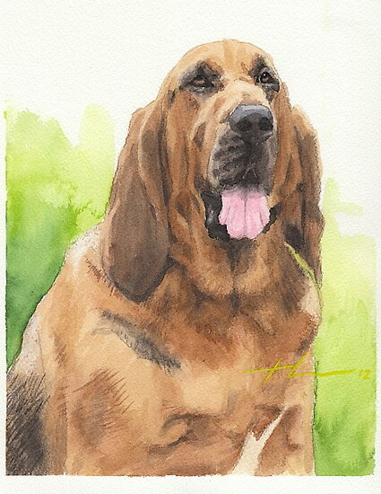 Hound dog watercolor by Mike Theuer