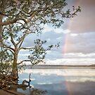 Lake Weyba by cowwws